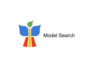 Google Model Search