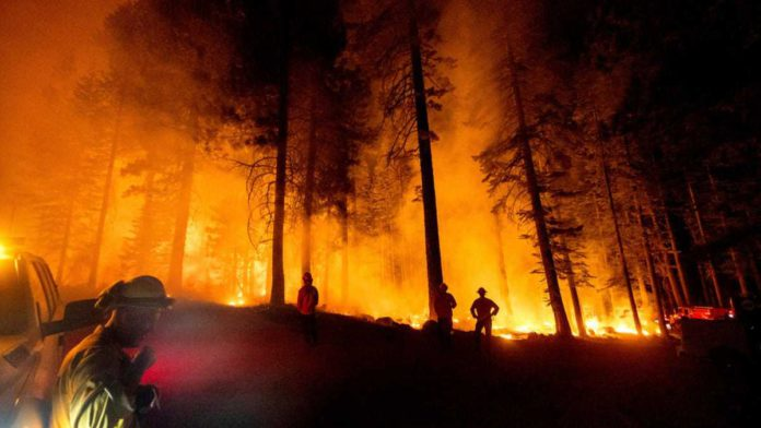 Firefighters use AI to battle Wildfire