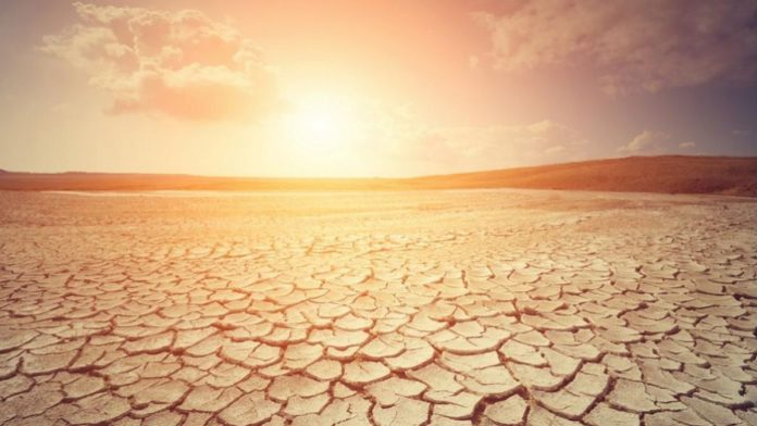 artificial intelligence detect heat waves