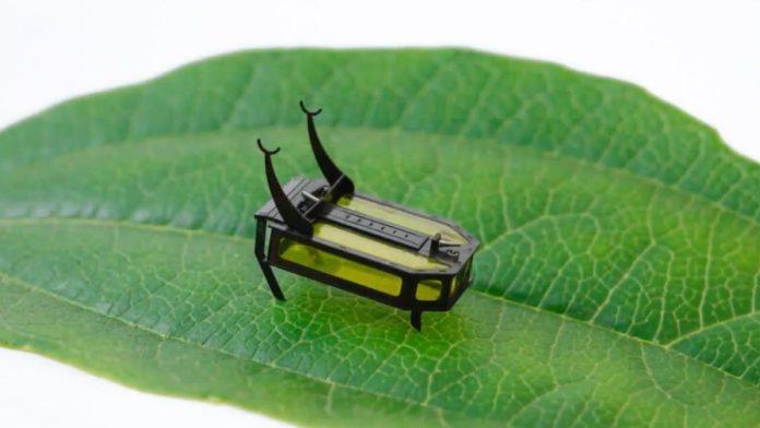 Washington State University engineer builds world's lightest crawling robot